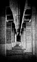 _MG_1583_under the bridge_2_bw_e